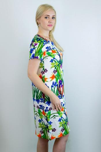 Платье из трикотажного полотна Арт-2718 Р/Р 50-56